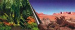 Photobackground Jungle & Desert - 120x50cm