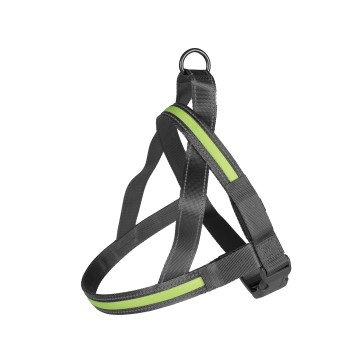 LED Sele - Metal Harness USB - 60-75cm/25mm - Grön - Utgående!