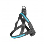 LED Sele - Metal Harness USB - 60-75cm/25mm - Blå
