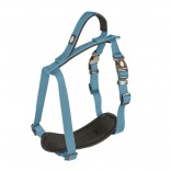 EXPLOR North harness nylon - XXL - 80-100cm/25mm - Petrol blue