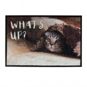 Pet Floor mat Indoor What's Up - Indoor use - 60x40cm