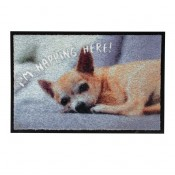 Pet Floor mat Indoor I'm Napping Here! - Indoor use - 60x40cm